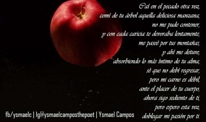 Poema - Mi Pecado